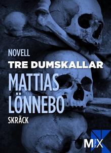 Tre dumskallar (e-bok) av Mattias Lönnebo