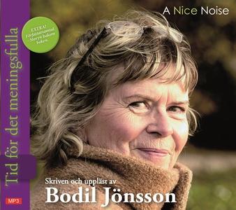 Tid för det meningsfulla (ljudbok) av Bodil Jön