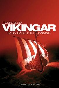 Vikingar : Saga, sägen och sanning (e-bok) av T