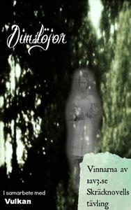 Dimslöjor (e-bok) av Jennie Johansson