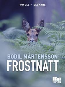 Frostnatt (e-bok) av Bodil Mårtensson