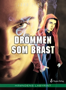 Drömmen som brast (e-bok) av Jörn Jensen