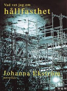 Vad vet jag om hållfasthet (e-bok) av Johanna E