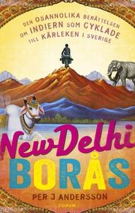 New Delhi - Borås : Den osannolika berättelsen