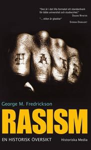 Rasism : en historisk översikt (e-bok) av Georg