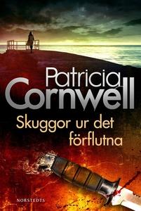 Skuggor ur det förflutna (e-bok) av Patricia Co