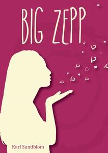 BIG ZEPP (e-bok) av Karl Sundblom