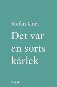 Det var en sorts kärlek : roman (e-bok) av Stef