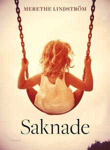 Saknade (e-bok) av Merethe Lindström