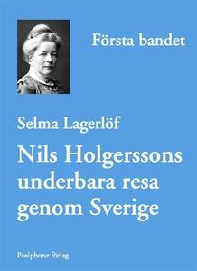 Nils Holgerssons underbara resa genom Sverige -