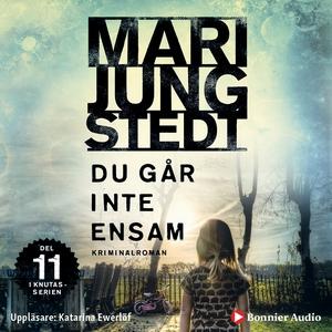 Du går inte ensam (ljudbok) av Mari Jungstedt