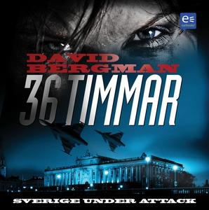 36 timmar (ljudbok) av David Bergman