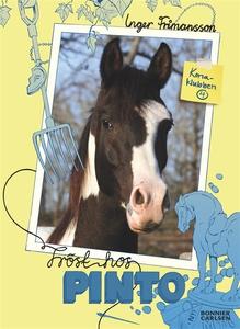 Tröst hos Pinto (e-bok) av Inger Frimansson