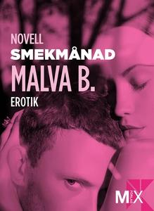 Smekmånad : en novell ur Begär (e-bok) av Malva