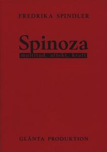 Spinoza: multitud, affekt, kraft  (e-bok) av Fr