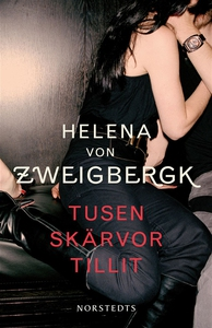 Tusen skärvor tillit (e-bok) av Helena von Zwei