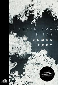Tusen små bitar (e-bok) av James Frey