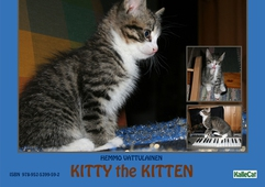 Kitty the Kitten  / e photo book