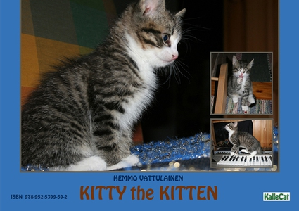 Kitty the Kitten  / e photo book (e-bok) av Hem