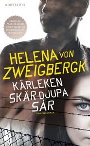 Kärleken skär djupa sår (e-bok) av Helena von Z