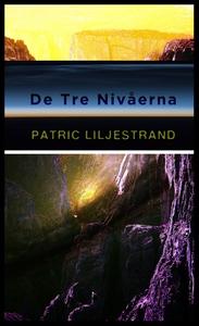 De tre nivåerna (ljudbok) av Patric Liljestrand