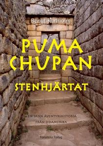 Puma Chupan (e-bok) av Bengt Karlholm