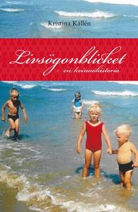 Livsögonblicket - en kvinnohistoria (e-bok) av