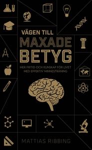 Vägen till maxade betyg (e-bok) av Mattias Ribb