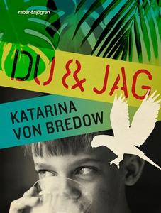 Du & jag (e-bok) av Katarina von Bredow