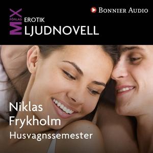 Husvagnssemestern (ljudbok) av Niklas Frykholm
