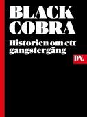 Black Cobra - historien om ett gangstergäng