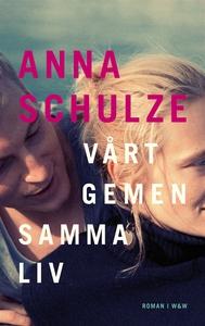 Vårt gemensamma liv (e-bok) av Anna Schulze