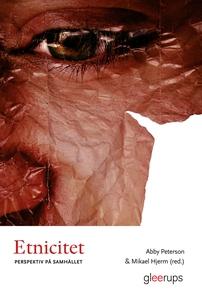 Etnicitet : Perspektiv på samhället (e-bok) av