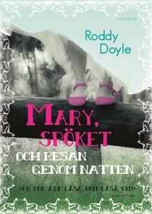 Mary, spöket och resan genom natten (e-bok) av