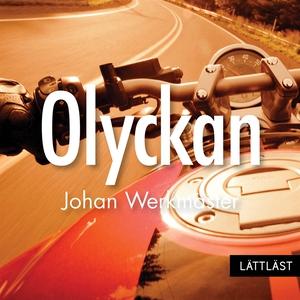 Olyckan / Lättläst (ljudbok) av Johan Werkmäste
