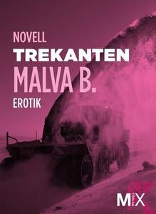 Trekanten : en novell ur Begär (e-bok) av Malva