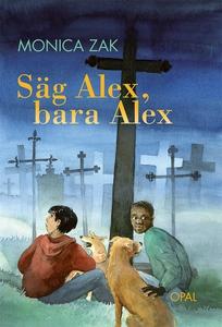 Säg Alex, bara Alex (e-bok) av Monica Zak