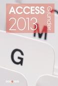 Access 2013 Grunder