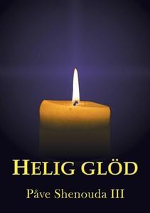 Helig glöd (e-bok) av Påve Shenouda III