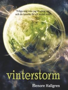 Vinterstorm (e-bok) av Elenore Hallgren