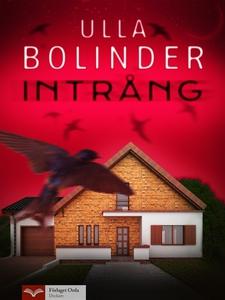 Intrång (e-bok) av Ulla Bolinder