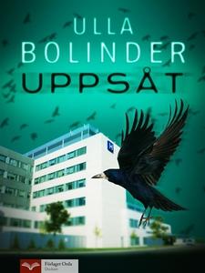 Uppsåt (e-bok) av Ulla Bolinder