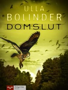 Domslut (e-bok) av Ulla Bolinder
