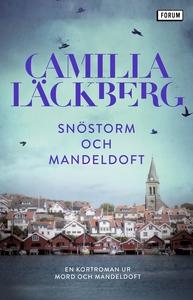 Snöstorm och mandeldoft : En kortroman ur Mord