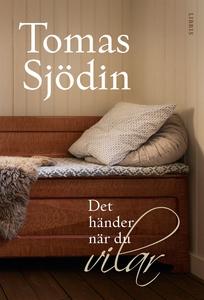 Det händer när du vilar (e-bok) av Tomas Sjödin
