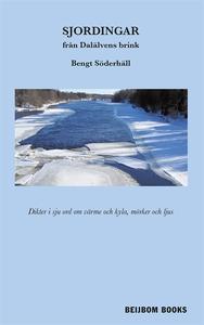 Sjordingar från Dalälvens brink (e-bok) av Beng