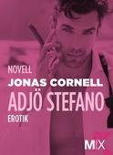 Adjö Stefano! : novell