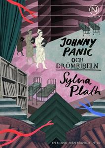 Johnny Panic och drömbibeln (ljudbok) av Sylvia