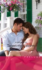 Tagen med storm (e-bok) av Karina Bliss