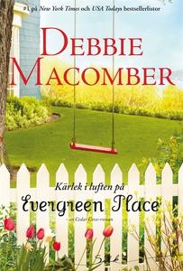 Kärlek i luften på Evergreen Place (e-bok) av D